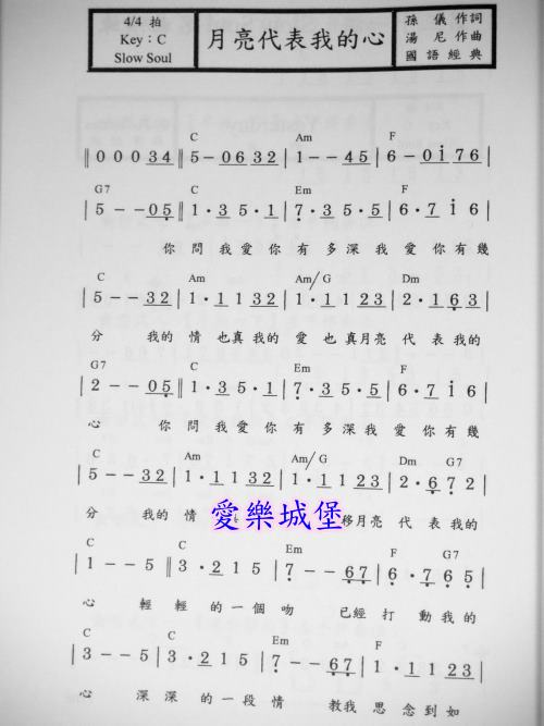不想懂得伴奏_愛樂城堡-音樂書坊樂譜鋼琴譜長笛譜小提琴譜各式樂譜音樂